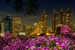 stadsnatten bangkok parkerar i staden på natten cit för skymning (Thailand) Arkivbild