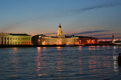stadsnevaflod Royaltyfri Bild
