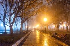Stadspark bij nacht Stock Foto's