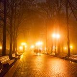 Stadspark bij nacht Stock Afbeelding