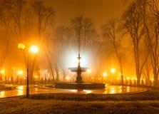 Stadspark bij nacht Stock Fotografie