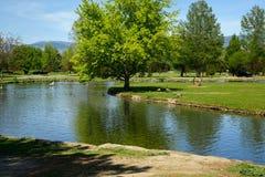 Stadspark in Boise, Idaho Royalty-vrije Stock Foto's