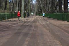 Stadspark in de vroege lente royalty-vrije stock foto
