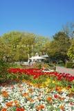 Stadspark in Ettlingen Stock Foto
