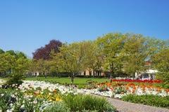 Stadspark in Ettlingen Royalty-vrije Stock Foto