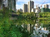 stadspark långt Fotografering för Bildbyråer
