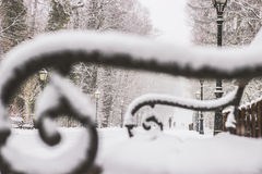 Stadspark Maksimir Zagreb, de winter stock foto