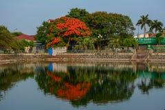 Stadspark met het meer royalty-vrije stock fotografie