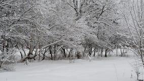 Stadspark met sneeuw dichtbij weg wordt behandeld die stock footage