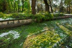 Stadspark na natuurlijke ramp Dalende boom en takken na natuurramp Stadspark na catastrofe Ramp in spri stock afbeeldingen
