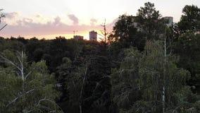 Stadspark van de hoogte op de zonsondergang stock footage