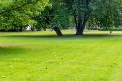Stadspark in zonnige de zomerdag Royalty-vrije Stock Afbeelding