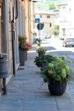 Stadssikt av Pescia, Italien Royaltyfri Bild