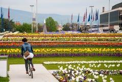 Stadssikt från blommaträdgård nära Bandiceve springbrunnar Royaltyfria Foton