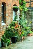 Stadsstraat met potten van bloemen Royalty-vrije Stock Afbeelding