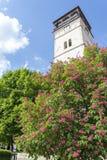 Stadstorn i Roznava, Slovakien Royaltyfri Foto