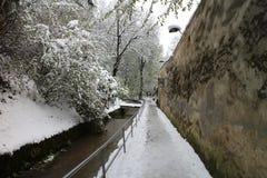 Stadsväggar Strada Dupa Ziduri i Brasov Royaltyfria Foton