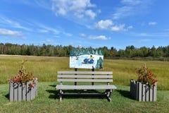 Stadt Adirondack USA der tupper See-Kunstbank Lizenzfreie Stockfotos