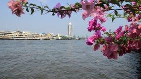 Stadt-Ansicht und der Fluss stockfotografie