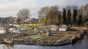 Stadt, die in Enkhuizen die Niederlande im Garten arbeitet Stockbild