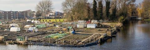 Stadt, die in Enkhuizen die Niederlande im Garten arbeitet Lizenzfreies Stockfoto