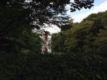 Stadt hinter den Bäumen Stockfotos