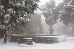 Stadt-Park in einem Schneesturm Stockfotos