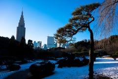 Stadt-Park-Winter Stockbild