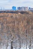 Stadt- und Baumkronen belichtet durch Sonnenlicht Stockbild