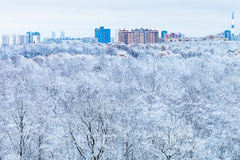 Stadt und Schneewald am blauen Wintermorgen Stockfotos