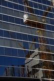 Stadtaufbau reflektiert im Glas. Stockbild