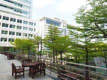 Stadtbaum lizenzfreies stockfoto