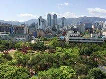 Stadtbild von grünem Forest Park und von moderner Architektur lizenzfreie stockfotografie