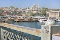 Stadtbild von Istanbul, die Türkei Lizenzfreie Stockfotos