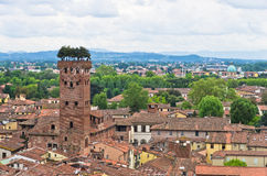 Stadtbild von Lucca mit Guinigi-Turm in der Front, Toskana Lizenzfreies Stockbild