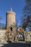 Stadtmauer, Wehr, Neubrandenburg Lizenzfreie Stockfotografie