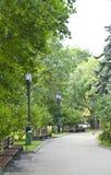 Stadtpark auf Sommer Lizenzfreies Stockbild