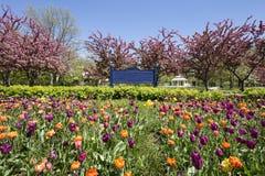 Stadtpark im Frühjahr Stockfotos