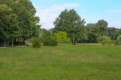 Stadtpark im Sommer Stockbild