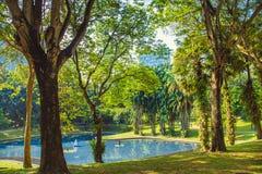Stadtpark in Kuala Lumpur malaysia stockfoto