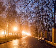 Stadtpark nachts Stockfoto
