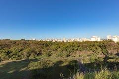 Stadtpark Ribeirao Preto, alias Curupira-Park Stockfotos