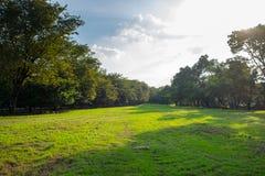 Stadtpark an Vachira Benchathat Park u. an x28; Fäule Fai Park u. x29; Stockfotografie