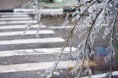 Stadtstraßen nachdem dem Einfrieren. lizenzfreies stockfoto