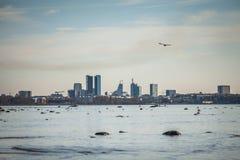 Stadtzentrumansicht Tallinns moderne Stockfoto