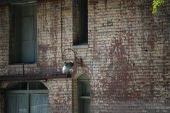 Stadtziegelsteine mit Lichtern Stockfotos