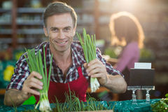 Staff arranging vegetables in organic section. Portrait of smiling staff arranging vegetables in organic section of supermarket Stock Photos
