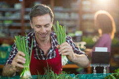 Staff arranging vegetables in organic section. Smiling staff arranging vegetables in organic section of supermarket Stock Photo