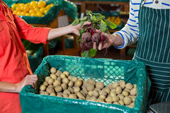 Staff assisting woman in selecting fresh beetroots. In supermarket Stock Images