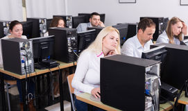 Staff sitting at desks and looking at PC screens Stock Image